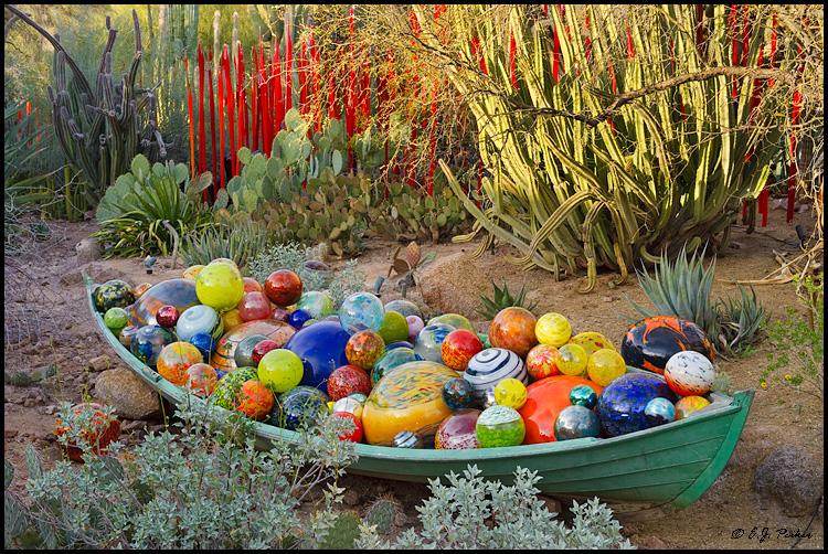 chihuli exhibit desert botanical garden - Desert Botanical Garden