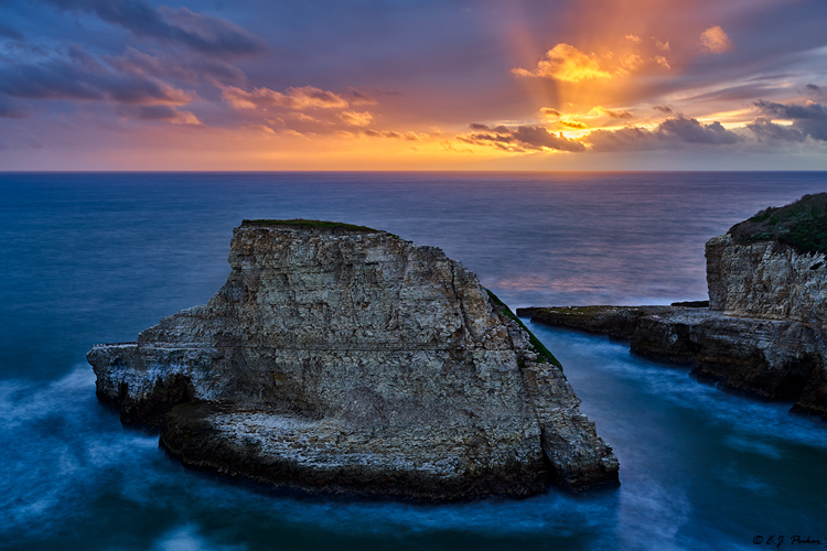 Shark Fin Cove, CA