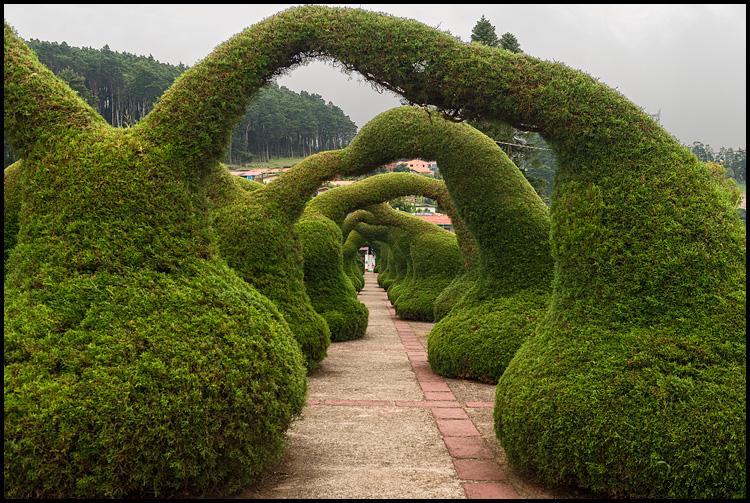 Zarcero page for Jardines costa rica