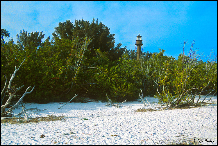 Sanibel Light, FL