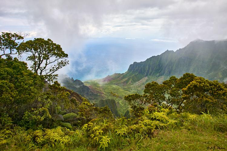 Kauai Page