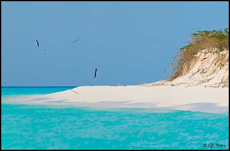 Sand Island, Midway Atoll