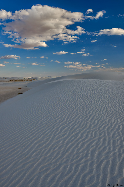 White Sands Page
