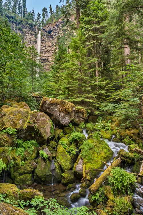 Umpqua National Forest Page