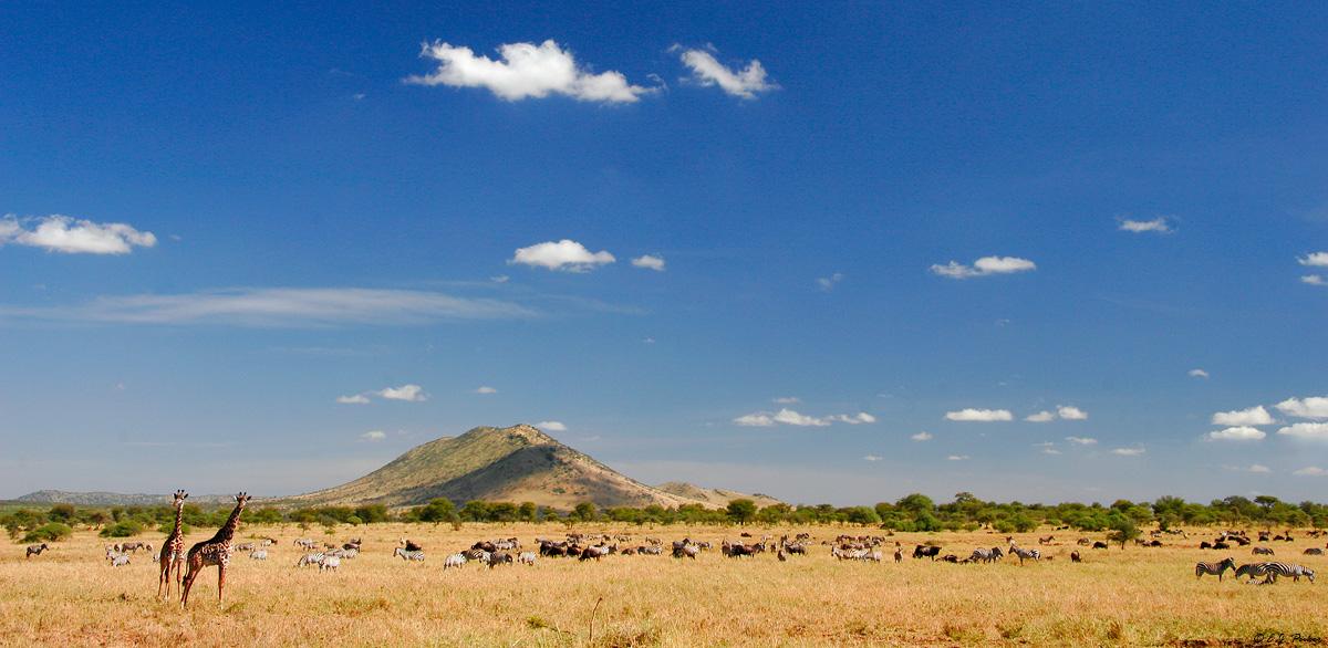 Tanzania Landscapes Page