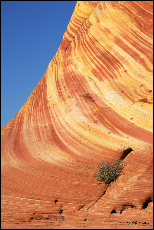 Paria Canyon Wilderness