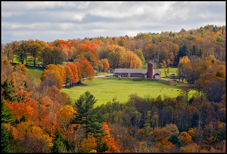 Farm, Woodstock, VT