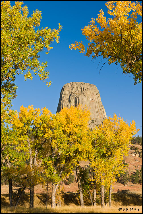 Devils Tower Wy >> Devil's Tower Page