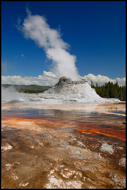 Castle Geyser, Yellowstone NP, WY