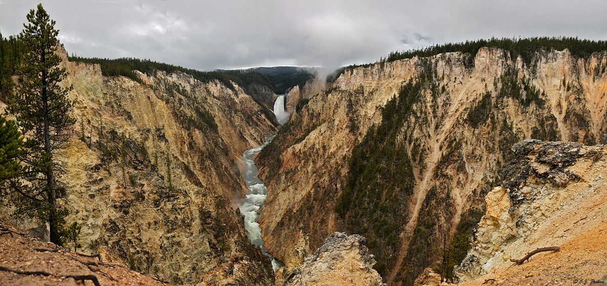 Grand Canyon of Yellowstone, Yellowstone NP, WY